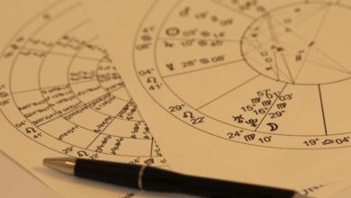 top 10 best astrologer in India
